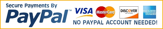 Paypal secure credit card processing